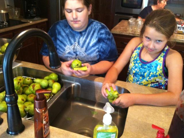 Colleen and Monroe wash pears during our Labor Day canning operation.