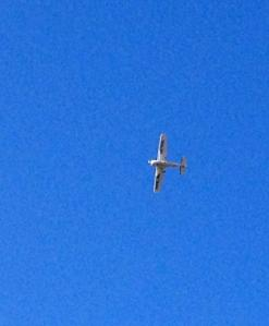 This plane was doing loops overhead at one point near the River Greenway.
