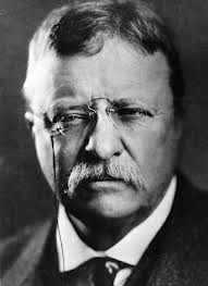 By the time I was done, Teddy Roosevelt had just become president.