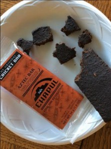 The Aztec bar contains dates, cocoa, cricket flour, espresso beans and cayenne.